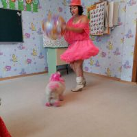 circus_dogs2_sm